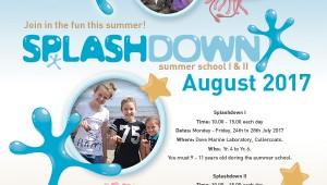 splashdown-poster2017