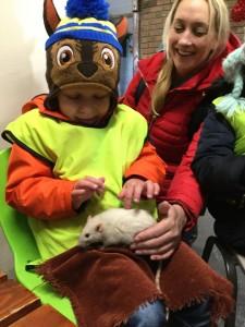 Meeting a rat